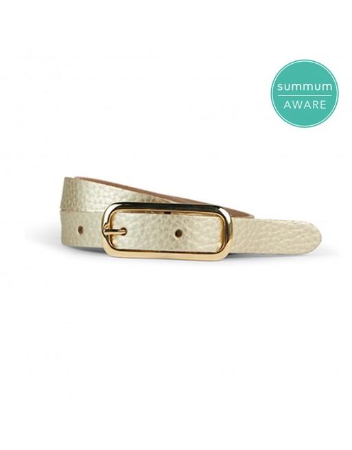 Small fancy belt