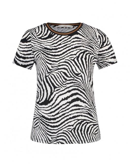 Alice zebra F